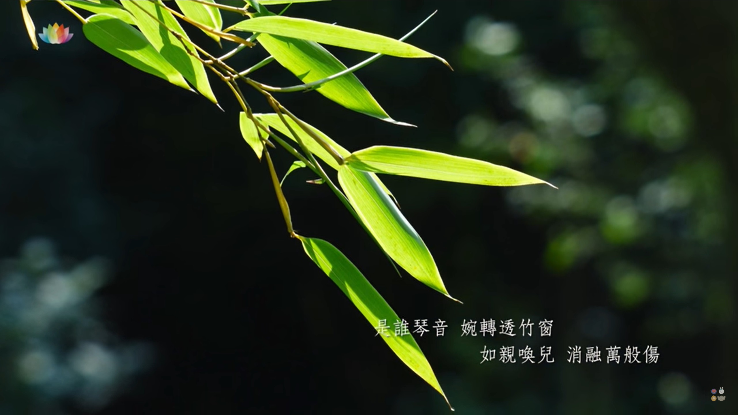 HEARTSTRINGS OF PRAISE:《在這個時候:祝福您》IN THIS MOMENT: A GIFT OF MELODY 21.10.2020