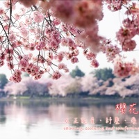 HEARTSTRINGS OF PRAISE:《在這個時候:祝福您》IN THIS MOMENT: A GIFT OF MELODY 26.10.2020