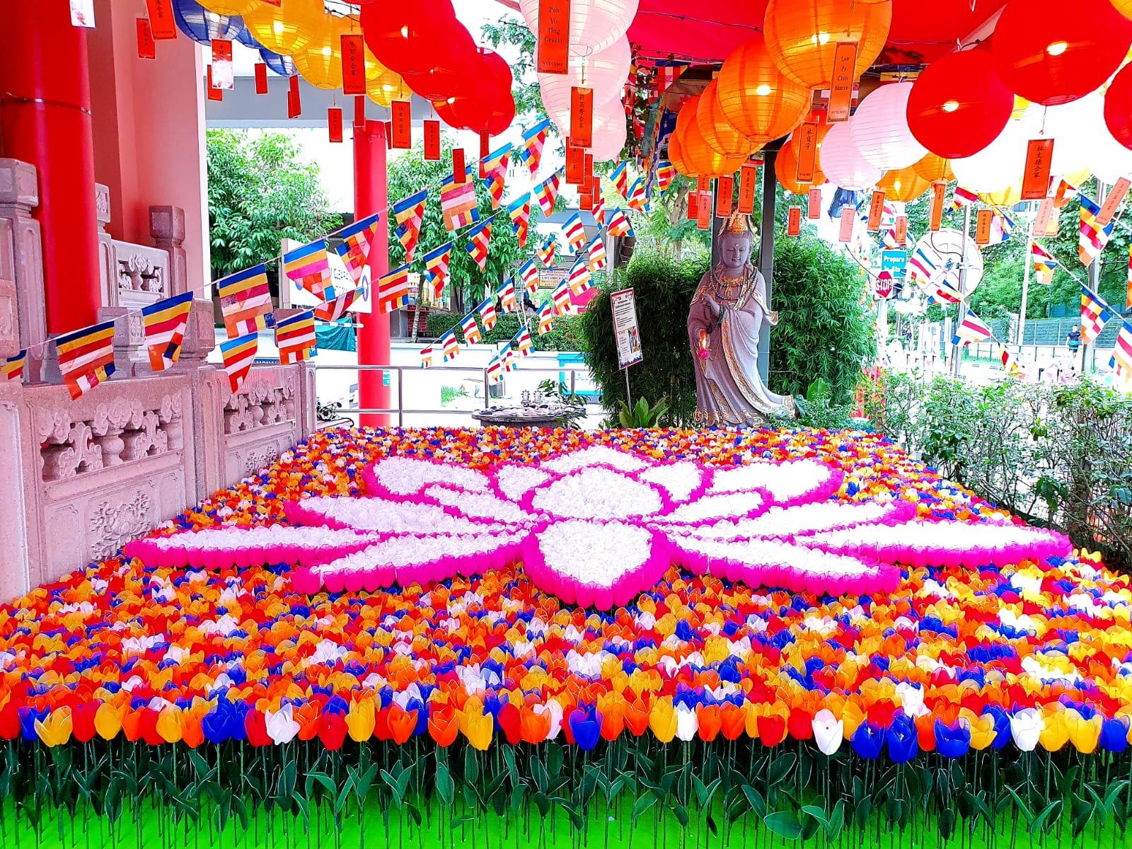 吉祥佛诞 – 五福郁金庆卫塞 Rainbow Tulips, Vesak Joy