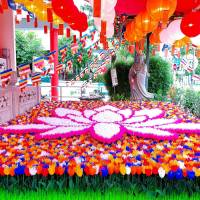 吉祥佛诞 - 五福郁金庆卫塞 Rainbow Tulips, Vesak Joy