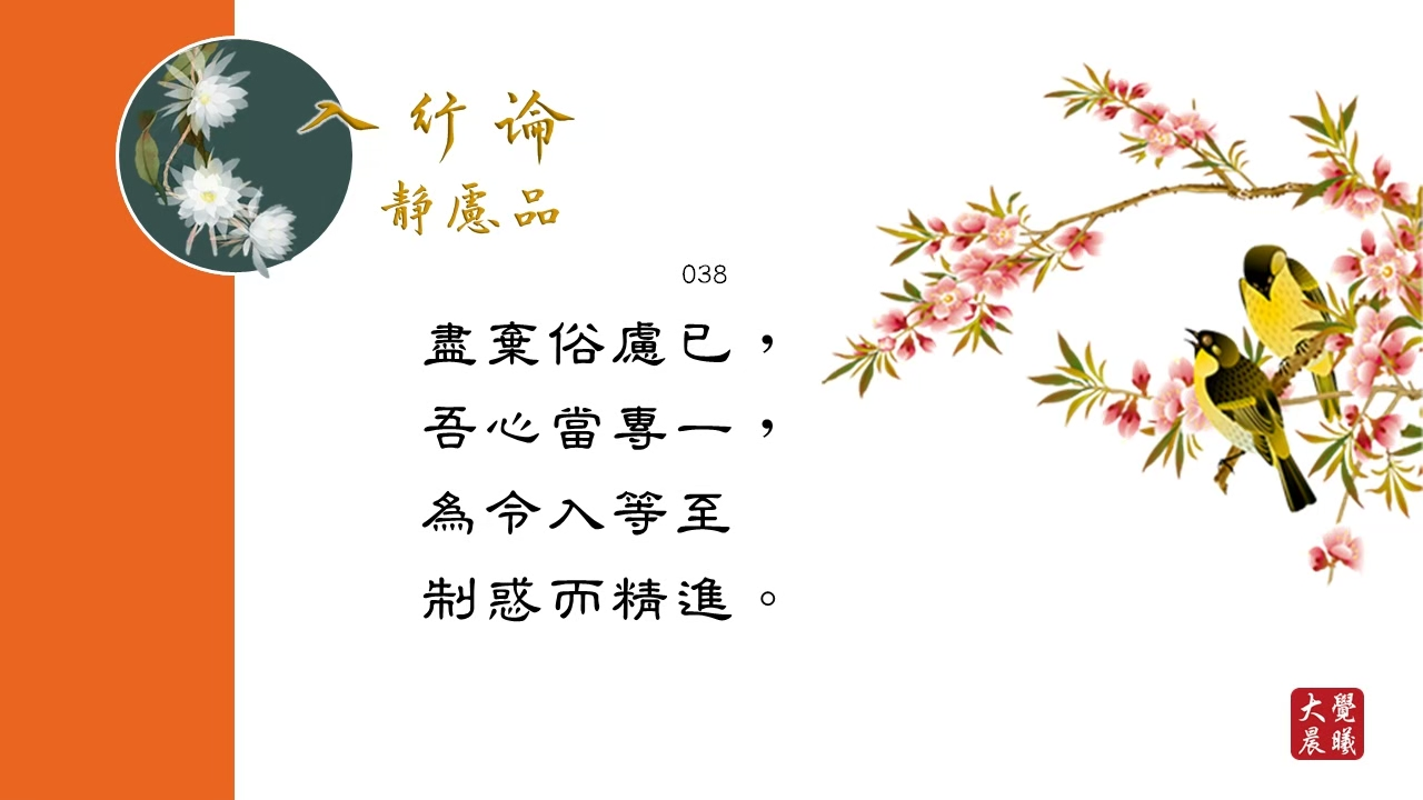 A Guide to the Bodhisattva's Way of Life: The Practice of Meditative Concentration Chapter《入菩萨行论》静虑品 #038 @BWMONASTERY 04.08.2021